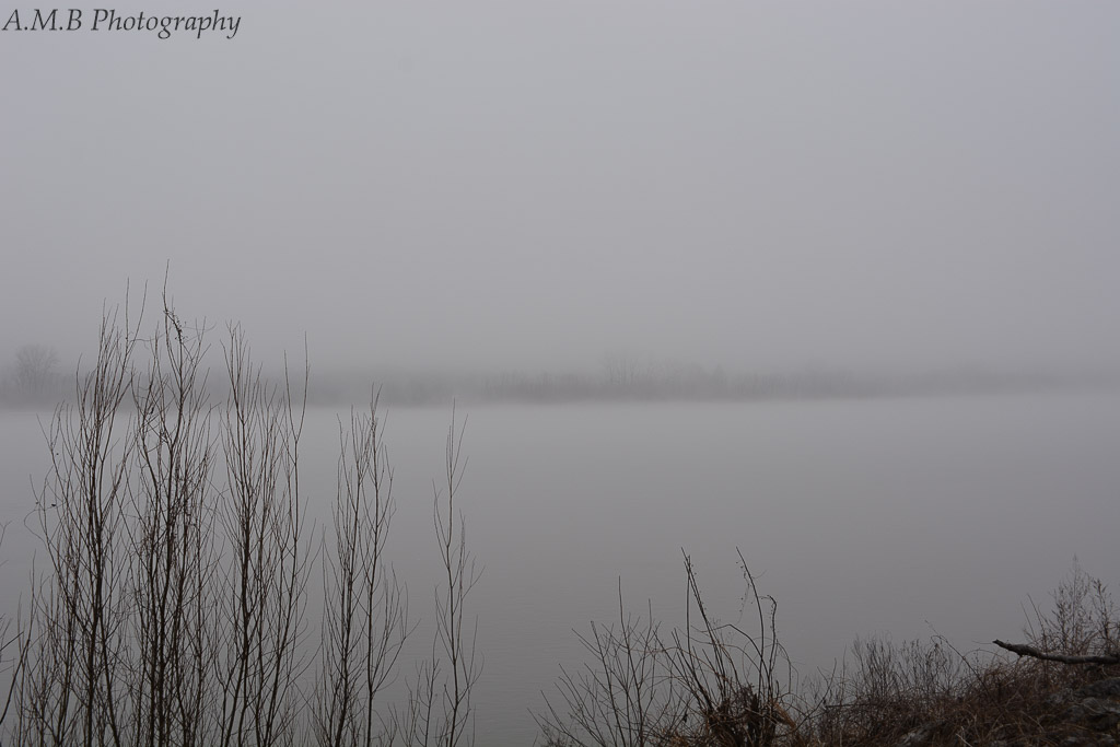 A fogged over pond in a nature preserve my husband and I came across on our drive back from Mississppi. It was such an interesting feeling being there; not quite able to see everything but knowing that it is there.