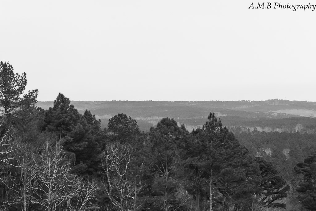 Captured in Mississippi from Pine Mountain Overlook in a National Forest. Such a lovely place to be.