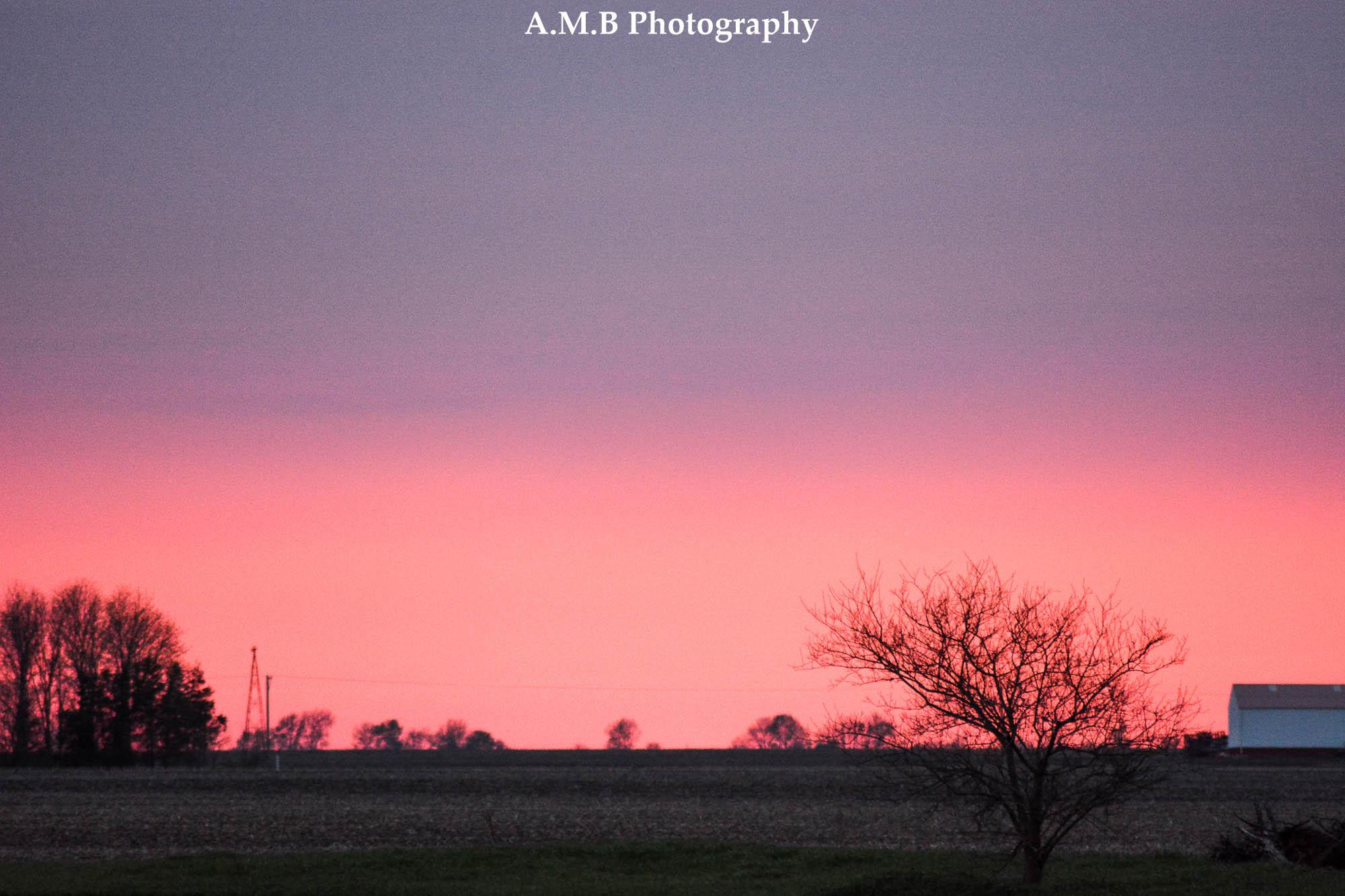 Spring Sunset III