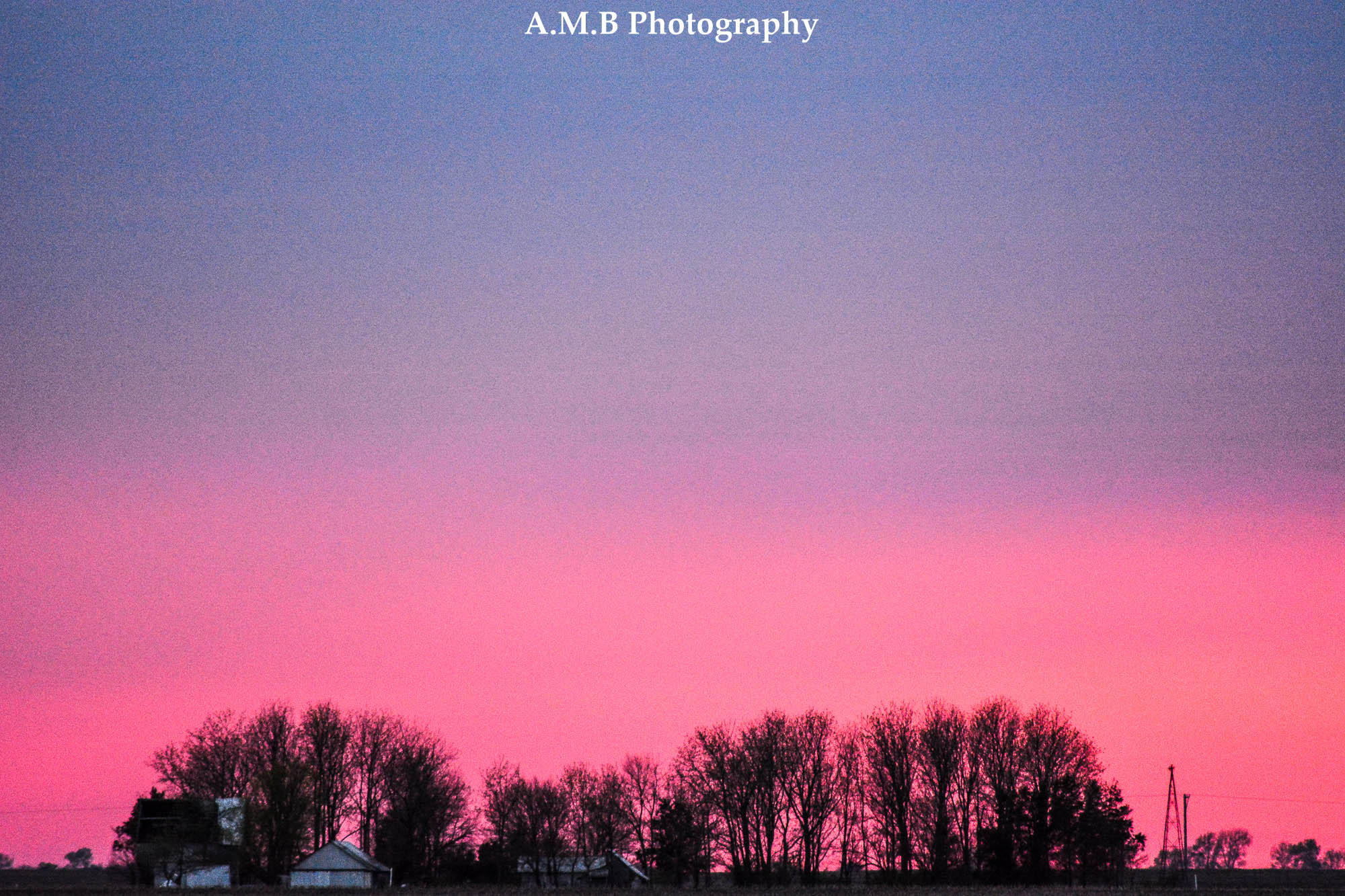 Spring Sunset VI