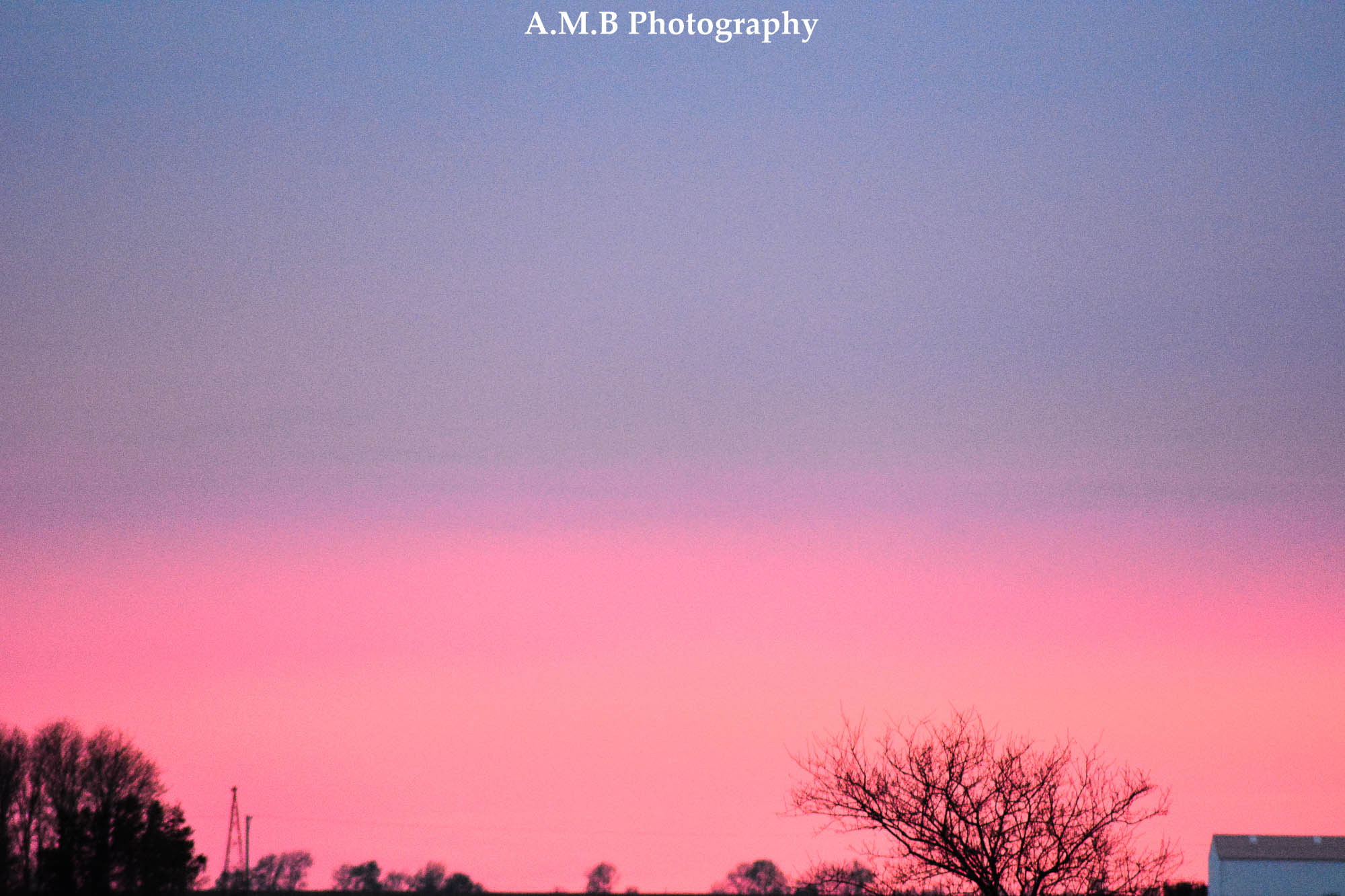 Spring Sunset VII