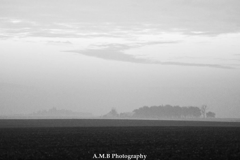 Sunrise Fog V
