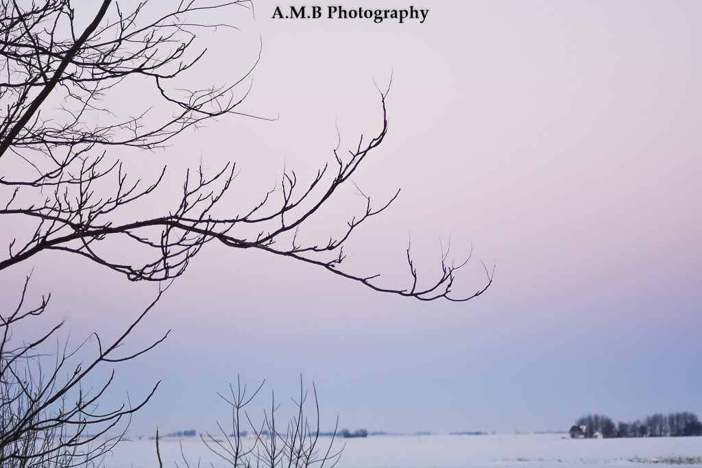 Captured on a February morning just before Valentine's Day, 2018. I love the blues and pinks of the sky showing just how cold is was that day. :)