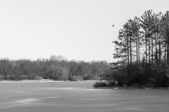 Evergreen Lake in Black and White