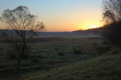 Preserved-Sunrise