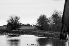Spring Flood in Black and White