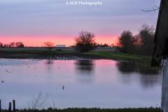 Spring Sunset II
