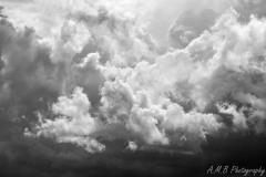 Summer Clouds III