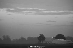 Sunrise Fog VIII