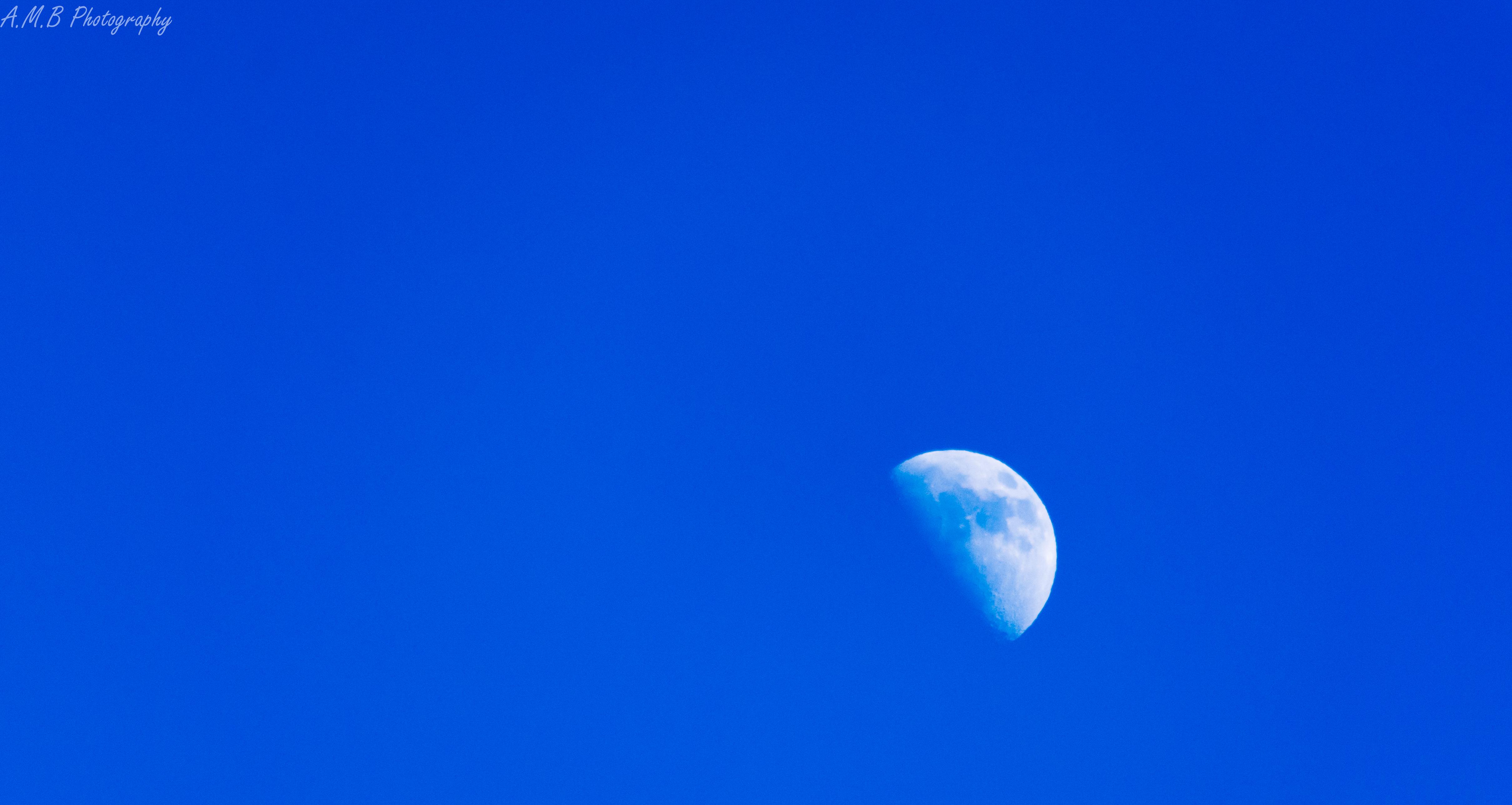 1st Quarter Moon II