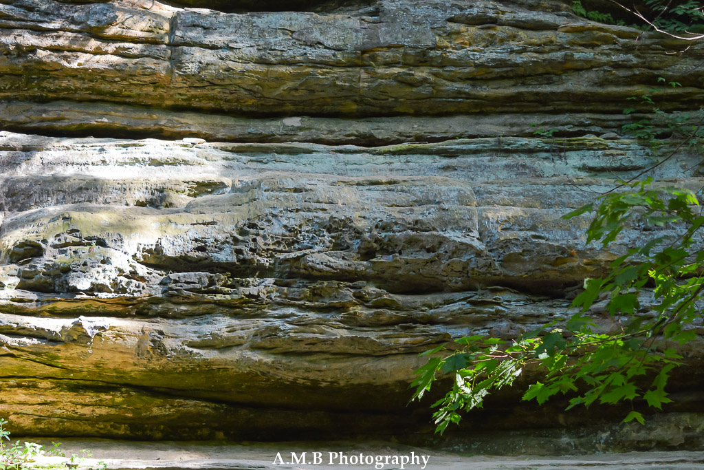 A close-up of a rock wall in the Starve Rock State Park in Illinois.