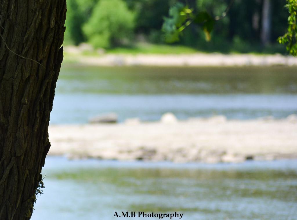 Riverside I