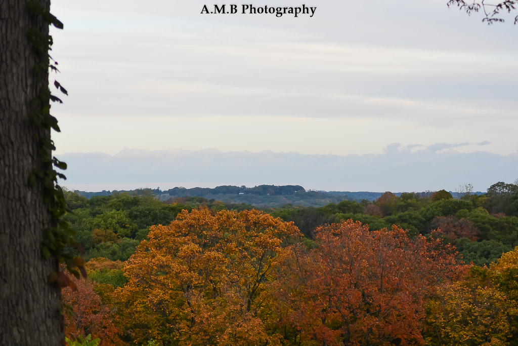 An early Saturday morning we drove to Peoria to hopefully capture the Fall colors and the Illinois River. We drove along Grand View Drive to get these shots in October, 2017.