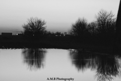 Black and White Flood  III
