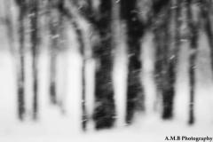 Ethereal Snow III